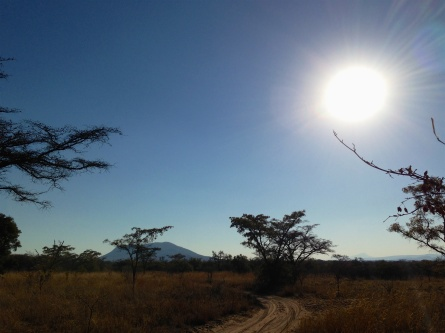 Mabula Game Reserve
